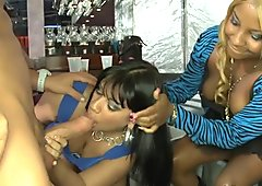 Lusty sweethearts are engulfing cocks